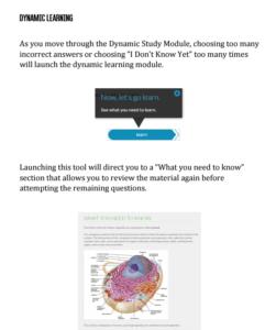 Dynamic Study Module